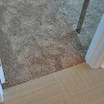 Plush carpeting I