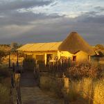 Φωτογραφία: Kalahari Red Dunes Lodge