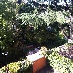 Jardin del Hotel