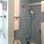 Shower area of Bathroom