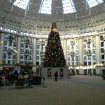 View of Atrium and Christmas tree