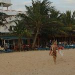 Photo of Neela's Guesthouse & Beach Restaurant