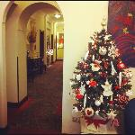 Christmas in beau site hotel