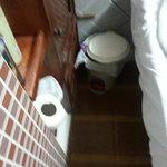 lavatorio, cesto de basura y cama al lado
