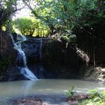 Latille Waterfalls and Gardens