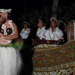 Island night dancer
