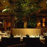 CACTUS ROSE DINNING ROOM