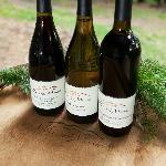 FIne wine from Villa del Monte Winery in the Santa Cruz Mountains