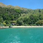 Beautiful colours in Pelorus Sound
