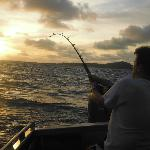 Laying into a yellowfin tuna at dawn - great photography mike!