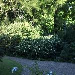Jardínes