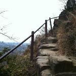 Giant Steps Trail