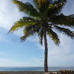 Photo of Dos Mundos Pacifico