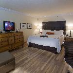 Newly Renovated Deluxe King Room Accommodations