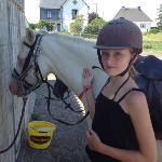 nearby pony ranch