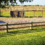 Guest Pasture