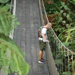 Hiking to hanging bridge