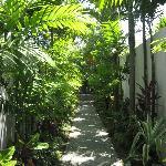 Garden walk to the villas