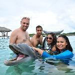 Great island activities