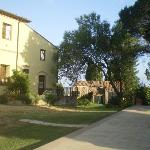 vue jardin de la terrasse