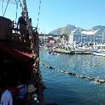 beautiful Cpt Harbour