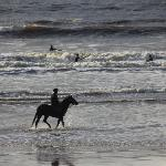 Plage de Lahinch, surf, cheval