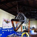 12 meter Subysaurus Tyrannosaurus Skeleton