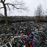 Just a few minutes from the train station and the massive bike parking lot