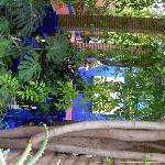 Jardin de Majorel