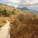 Nature Walk sights