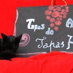 Photo of Tapas do Alem Tejo
