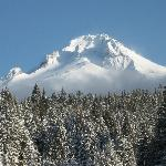 Mt Hood w/ fresh snow