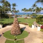 coconut Christmas