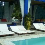 Shore Club,poolside
