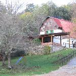 Azienda Agrituristica Bergi