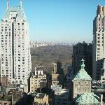 View toward Central Park from Tower Room