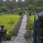 Front garden - tidy!