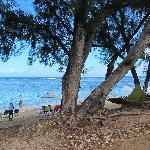 LUX beach