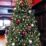 Lobby with Christmas Tree.