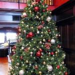 Lobby with Christmas Tree.
