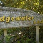 Edgewater Photo
