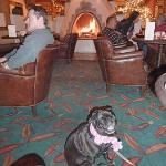 Hotel Santa Fe lobby dining