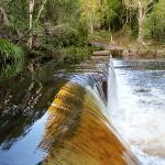 waterpark creek. Ferns hideaway