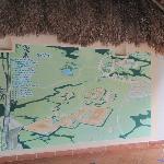 Un mapa de la zona