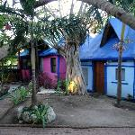 Some of the bungalows