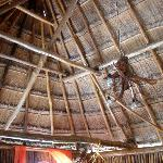 Palapao roof of jungle room