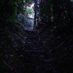 Escalera - Ciudad Perdida