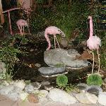 Der Flamigo Garten