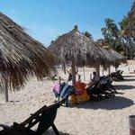 Beach Palypas