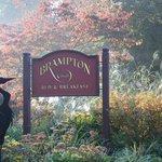 Photo of Brampton Dragon